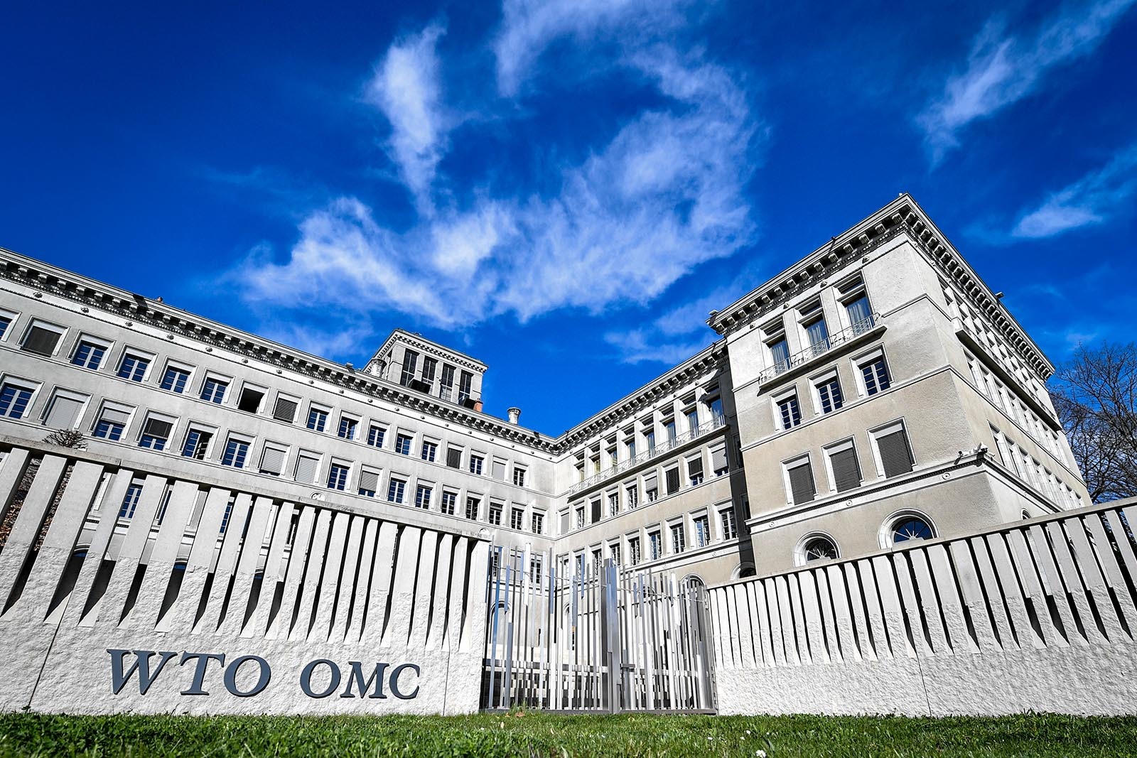 A Double Bind for the World Trade Organization